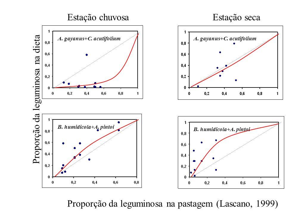 Proporção da leguminosa na pastagem (Lascano, 1999) Proporção da leguminosa na dieta Estação chuvosaEstação seca A. gayanus+C. acutifolium B. humidico