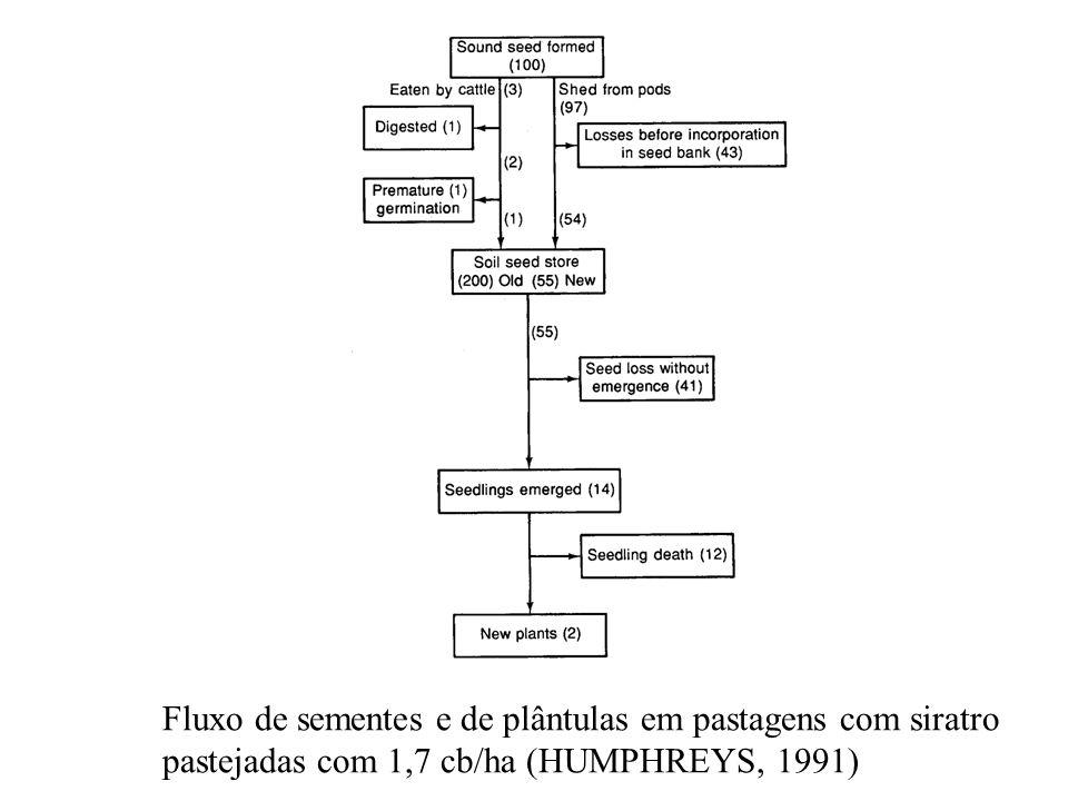 Fluxo de sementes e de plântulas em pastagens com siratro pastejadas com 1,7 cb/ha (HUMPHREYS, 1991)