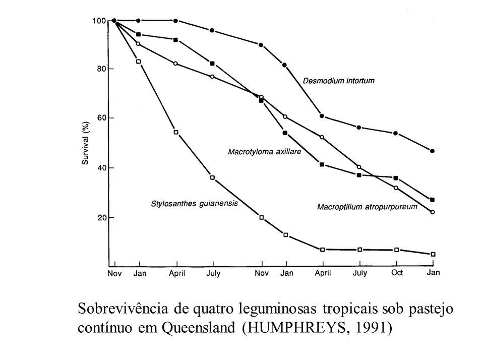 Sobrevivência de quatro leguminosas tropicais sob pastejo contínuo em Queensland (HUMPHREYS, 1991)