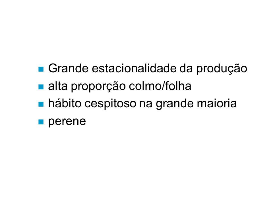 n Grande estacionalidade da produção n alta proporção colmo/folha n hábito cespitoso na grande maioria n perene