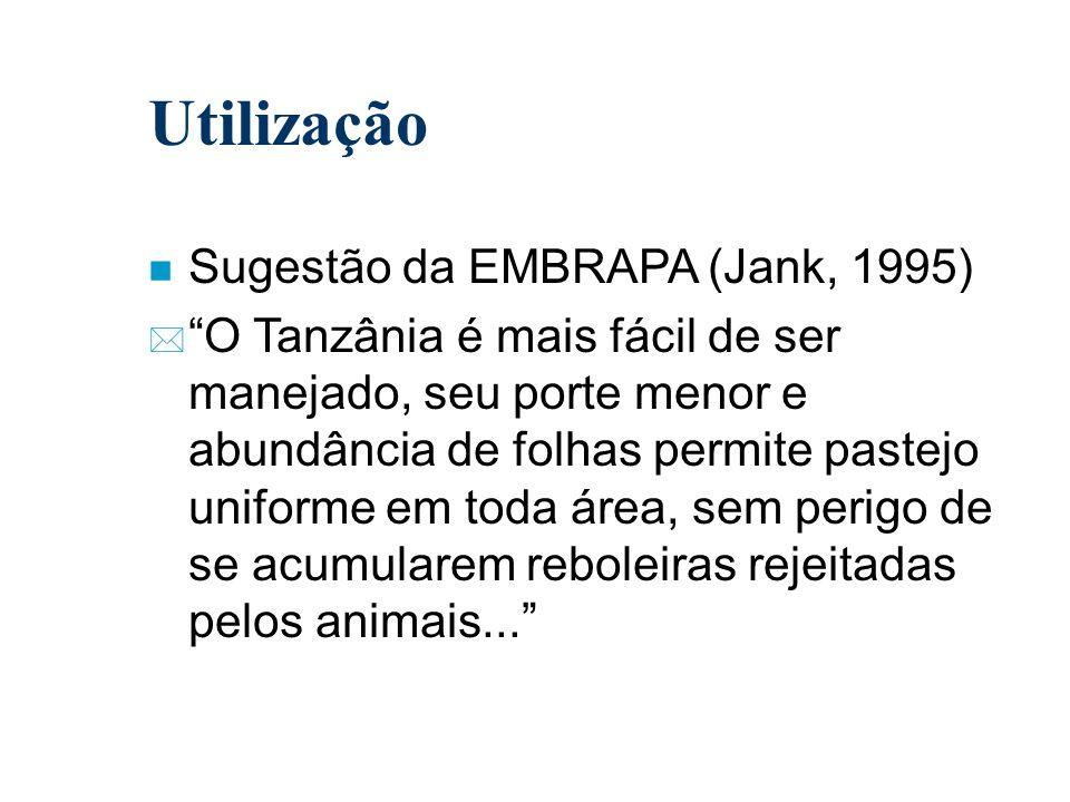 Utilização n Sugestão da EMBRAPA (Jank, 1995) * O Tanzânia é mais fácil de ser manejado, seu porte menor e abundância de folhas permite pastejo unifor