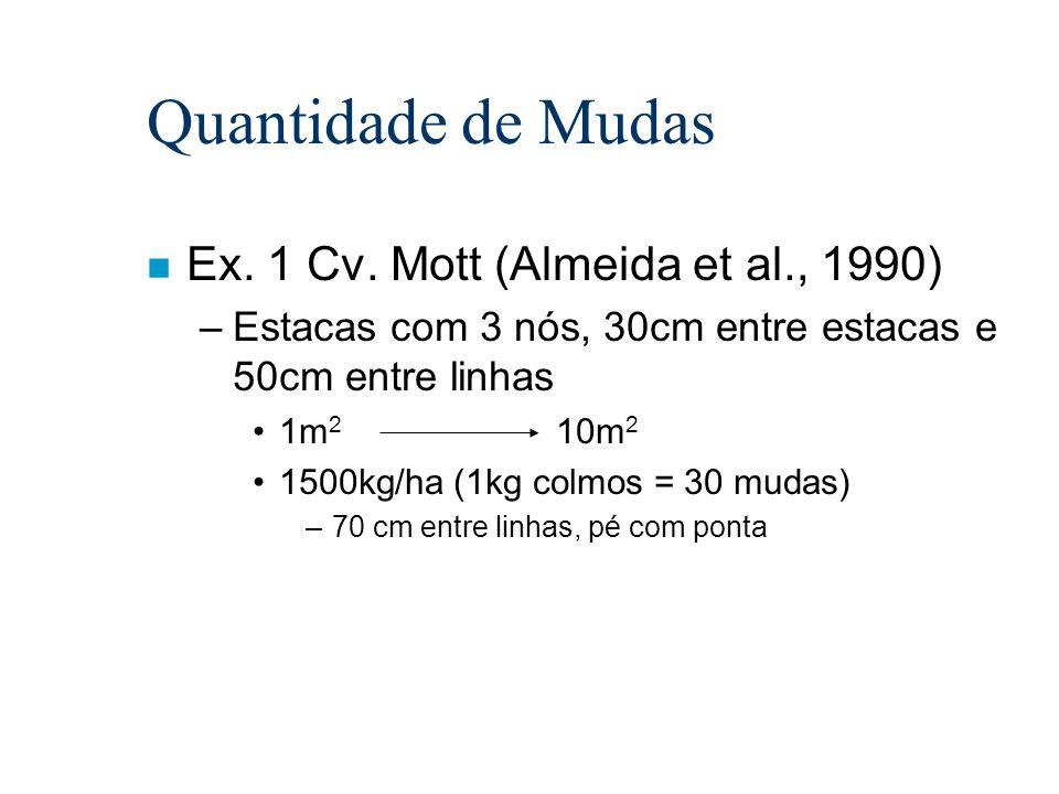 Quantidade de Mudas n Ex. 1 Cv. Mott (Almeida et al., 1990) –Estacas com 3 nós, 30cm entre estacas e 50cm entre linhas 1m 2 10m 2 1500kg/ha (1kg colmo