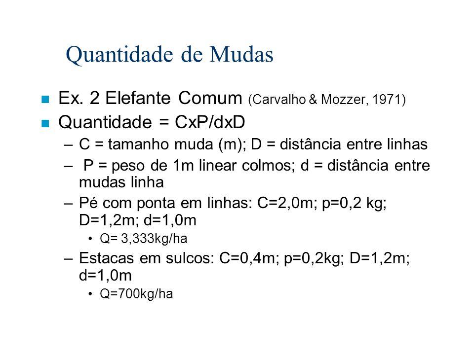 Quantidade de Mudas n Ex. 2 Elefante Comum (Carvalho & Mozzer, 1971) n Quantidade = CxP/dxD –C = tamanho muda (m); D = distância entre linhas – P = pe