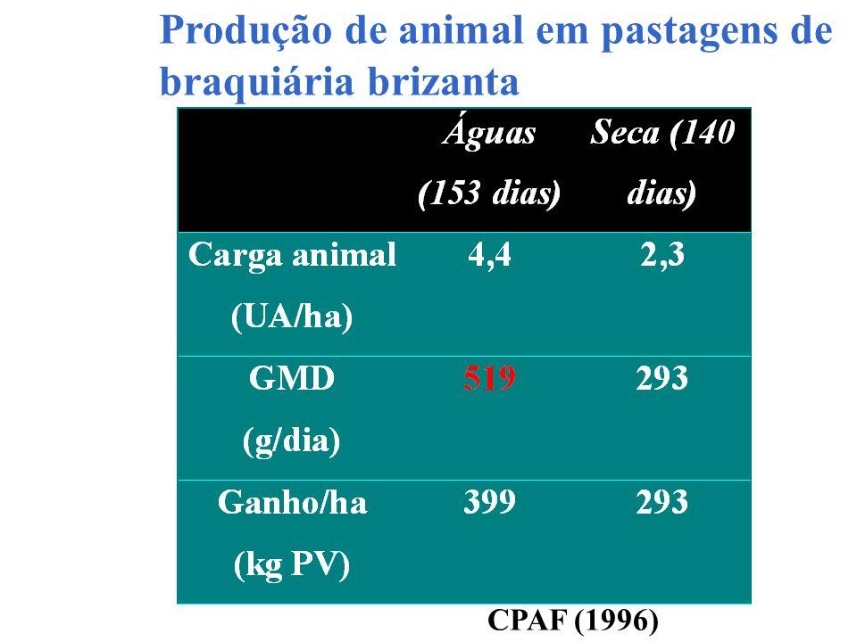 Produção de animal em pastagens de braquiária brizanta CPAF (1996)