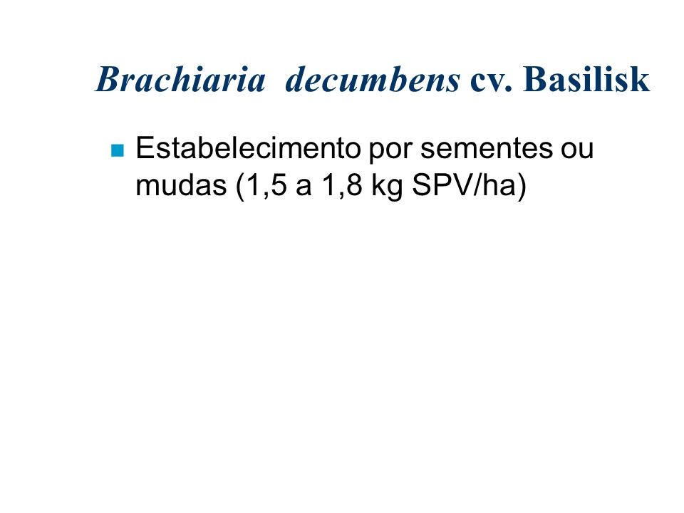 Brachiaria decumbens cv. Basilisk n Estabelecimento por sementes ou mudas (1,5 a 1,8 kg SPV/ha)