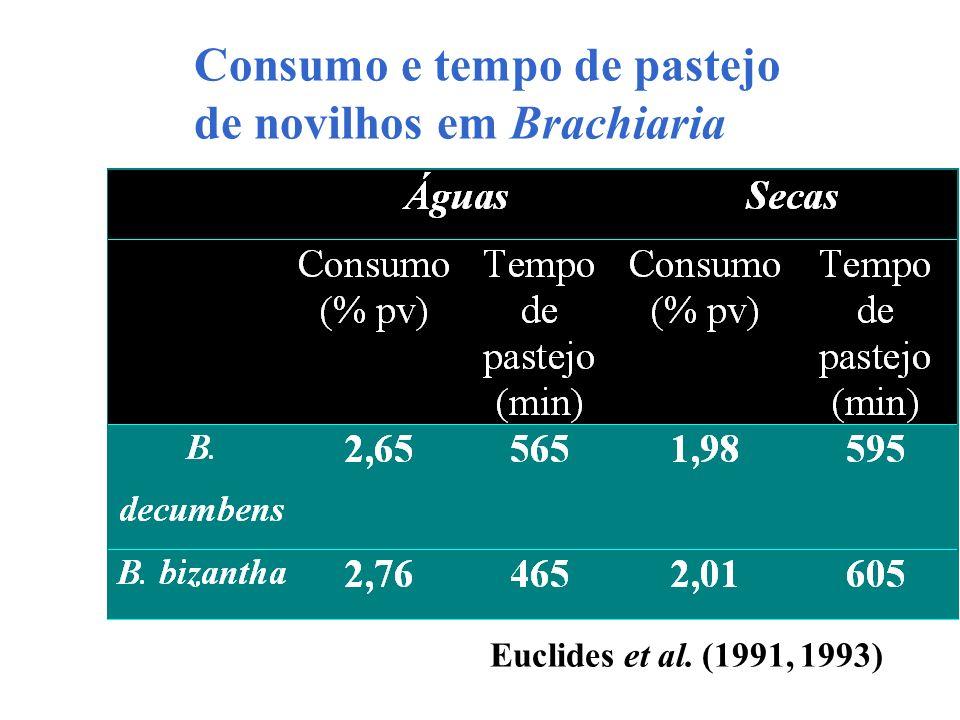 Consumo e tempo de pastejo de novilhos em Brachiaria Euclides et al. (1991, 1993)