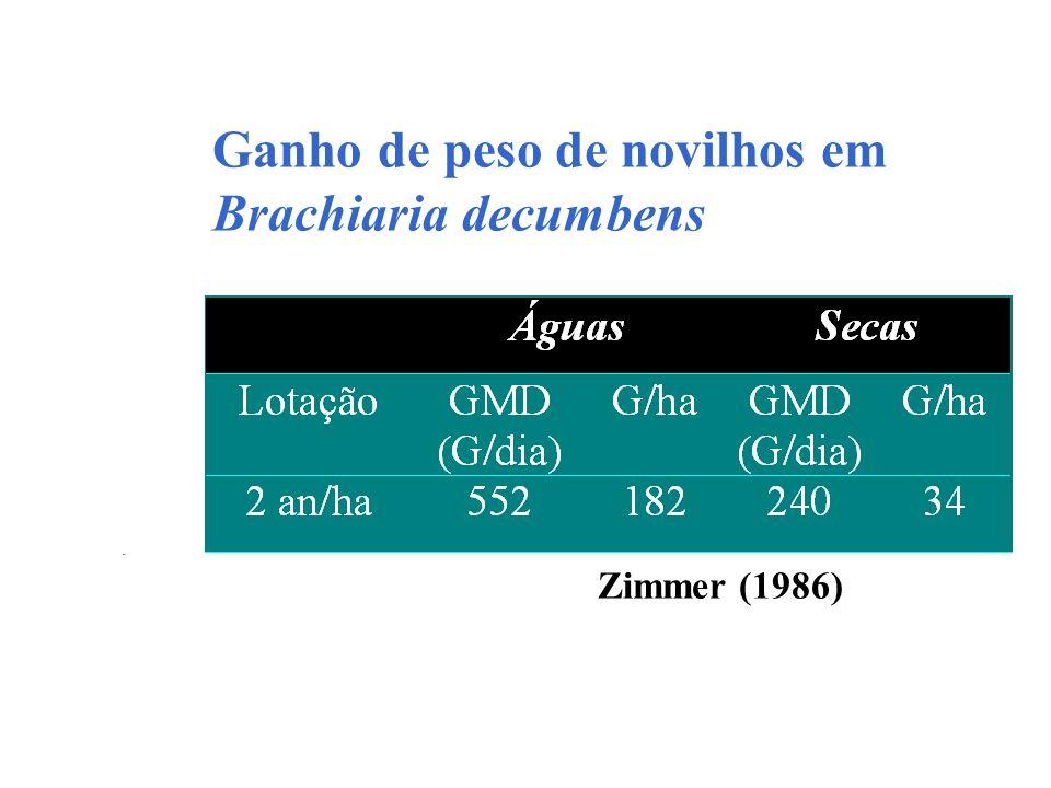 Ganho de peso de novilhos em Brachiaria decumbens Zimmer (1986)
