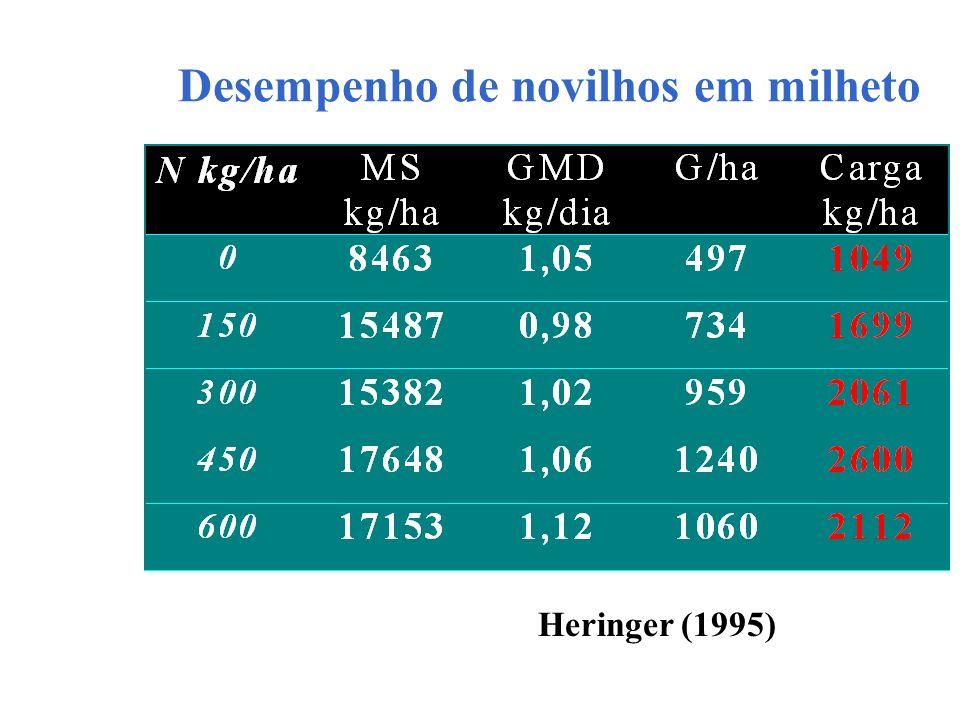 Desempenho de novilhos em milheto Heringer (1995)