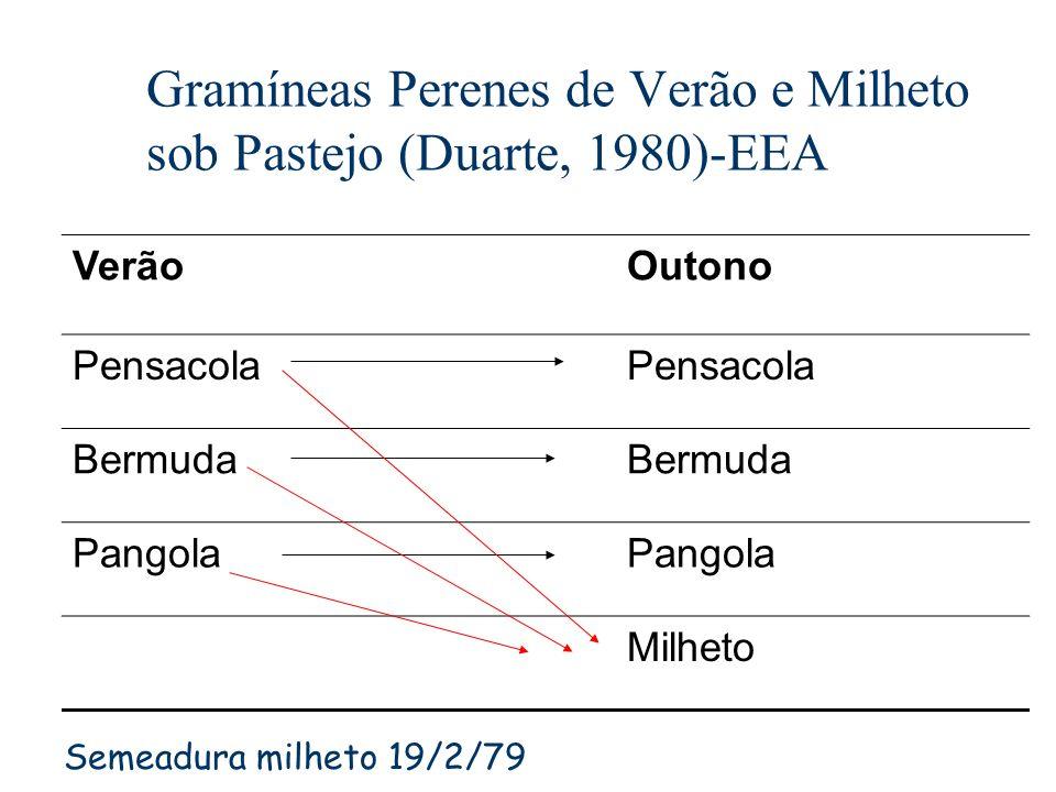 Gramíneas Perenes de Verão e Milheto sob Pastejo (Duarte, 1980)-EEA VerãoOutono Pensacola Bermuda Pangola Milheto Semeadura milheto 19/2/79