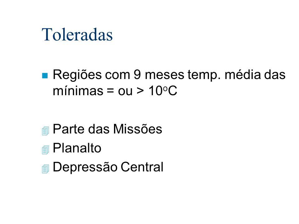 Toleradas n Regiões com 9 meses temp. média das mínimas = ou > 10 o C 4 Parte das Missões 4 Planalto 4 Depressão Central
