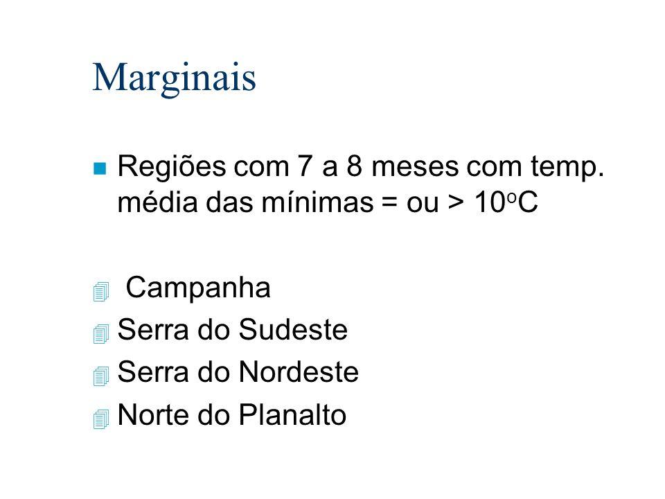Marginais n Regiões com 7 a 8 meses com temp. média das mínimas = ou > 10 o C 4 Campanha 4 Serra do Sudeste 4 Serra do Nordeste 4 Norte do Planalto