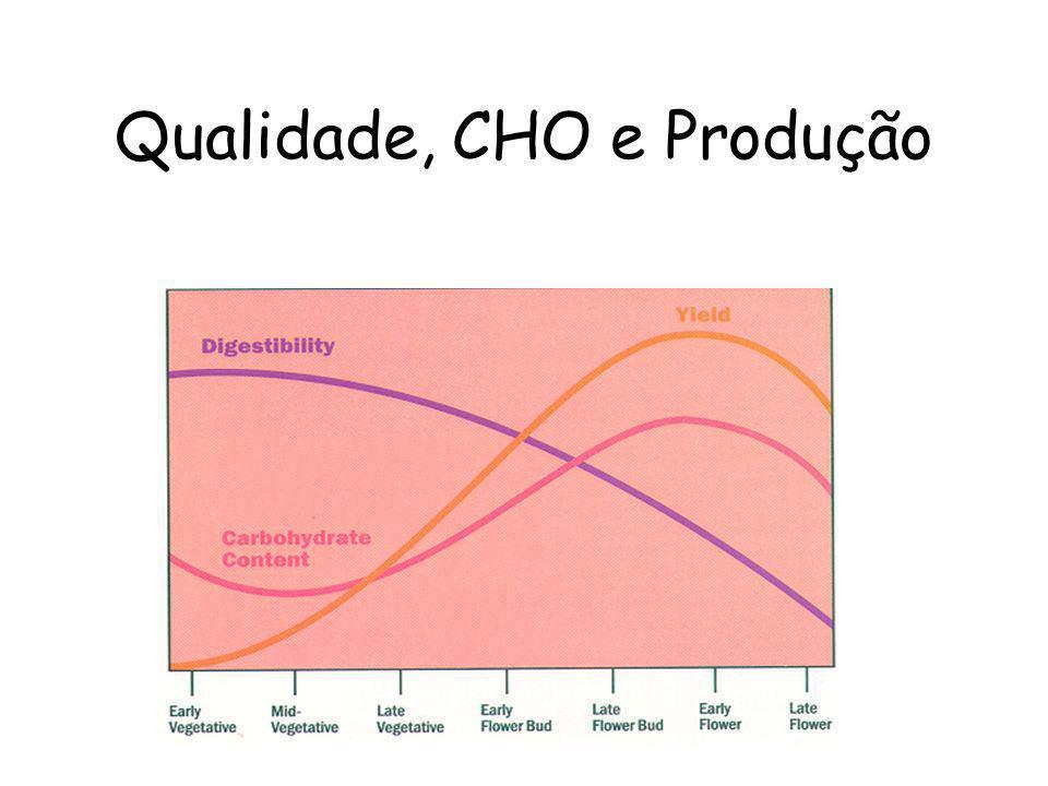 Qualidade, CHO e Produção
