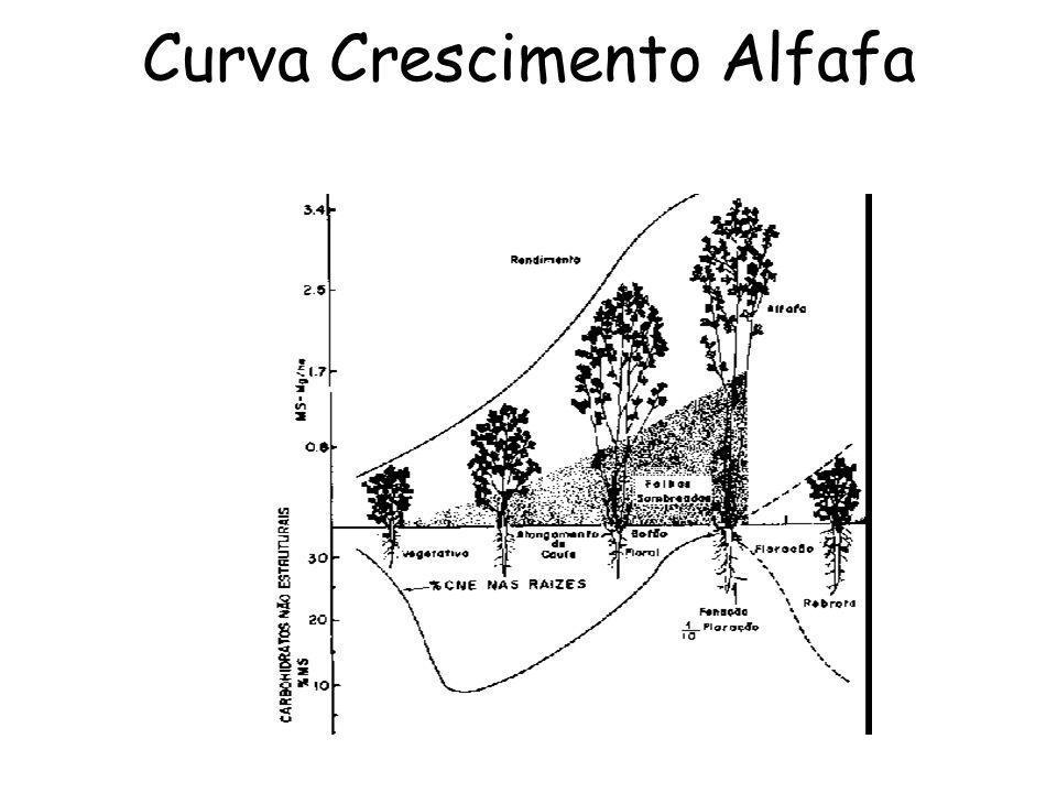 Curva Crescimento Alfafa