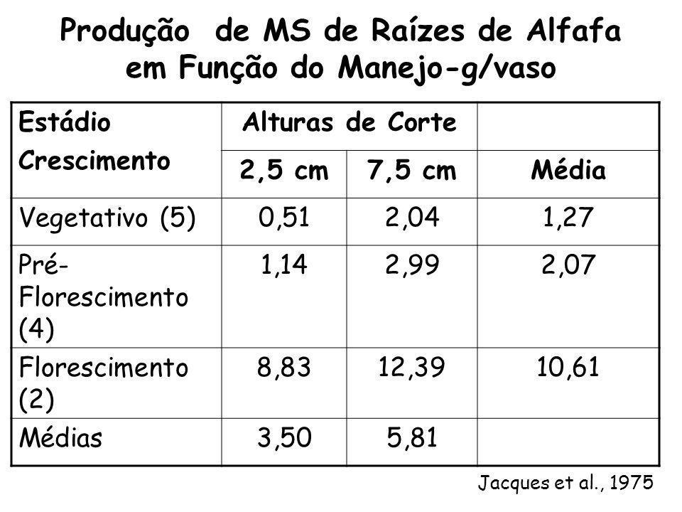 Produção de MS de Raízes de Alfafa em Função do Manejo-g/vaso Estádio Crescimento Alturas de Corte 2,5 cm7,5 cmMédia Vegetativo (5)0,512,041,27 Pré- F