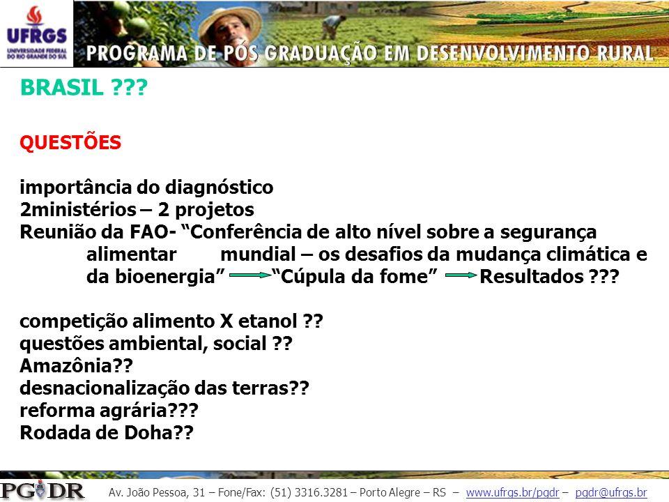 Av. João Pessoa, 31 – Fone/Fax: (51) 3316.3281 – Porto Alegre – RS – www.ufrgs.br/pgdr – pgdr@ufrgs.br BRASIL ??? QUESTÕES importância do diagnóstico