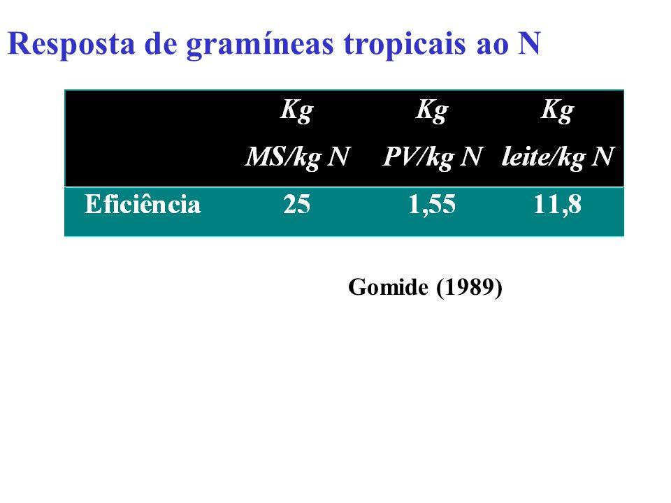 Resposta de gramíneas temperadas ao N Adaptado de Mazzanti et al. (1997)