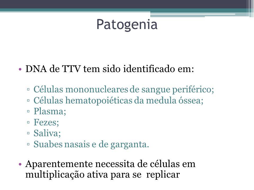 Patogenia DNA de TTV tem sido identificado em: Células mononucleares de sangue periférico; Células hematopoiéticas da medula óssea; Plasma; Fezes; Sal