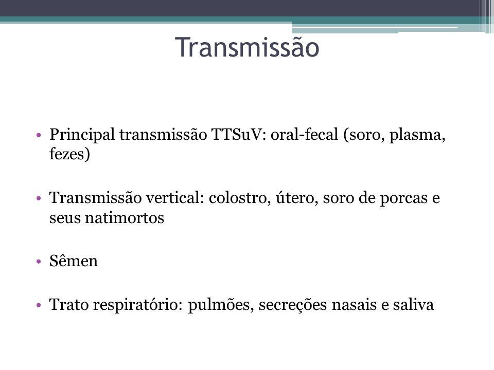 Transmissão Principal transmissão TTSuV: oral-fecal (soro, plasma, fezes) Transmissão vertical: colostro, útero, soro de porcas e seus natimortos Sême