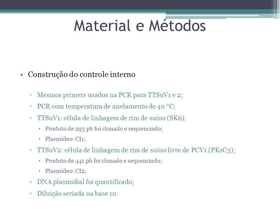 Material e Métodos Construção do controle interno Mesmos primers usados na PCR para TTSuV1 e 2; PCR com temperatura de anelamento de 40 °C; TTSuV1: cé