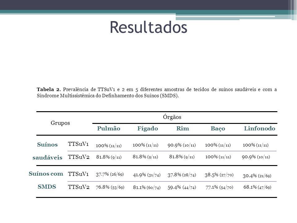 Resultados Tabela 2. Prevalência de TTSuV1 e 2 em 5 diferentes amostras de tecidos de suínos saudáveis e com a Síndrome Multissistêmica do Definhament