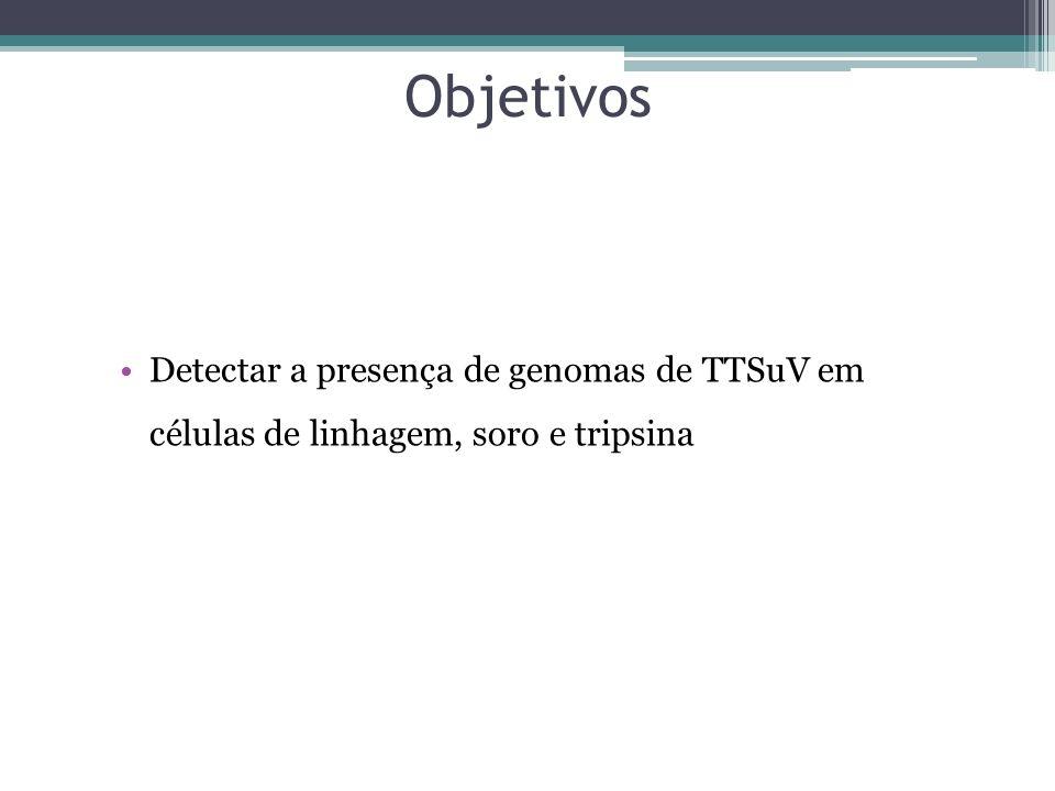Objetivos Detectar a presença de genomas de TTSuV em células de linhagem, soro e tripsina