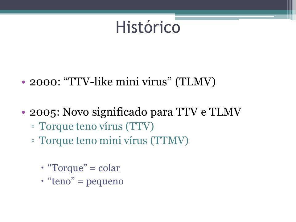 Histórico 2000: TTV-like mini virus (TLMV) 2005: Novo significado para TTV e TLMV Torque teno vírus (TTV) Torque teno mini vírus (TTMV) Torque = colar