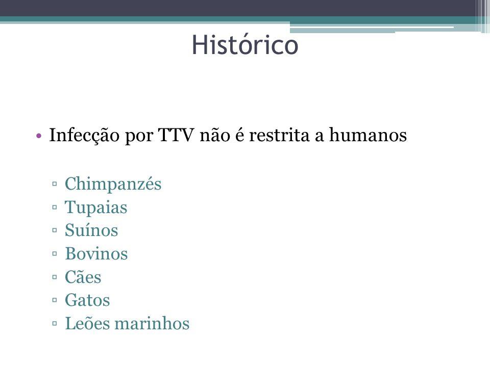 Histórico Infecção por TTV não é restrita a humanos Chimpanzés Tupaias Suínos Bovinos Cães Gatos Leões marinhos