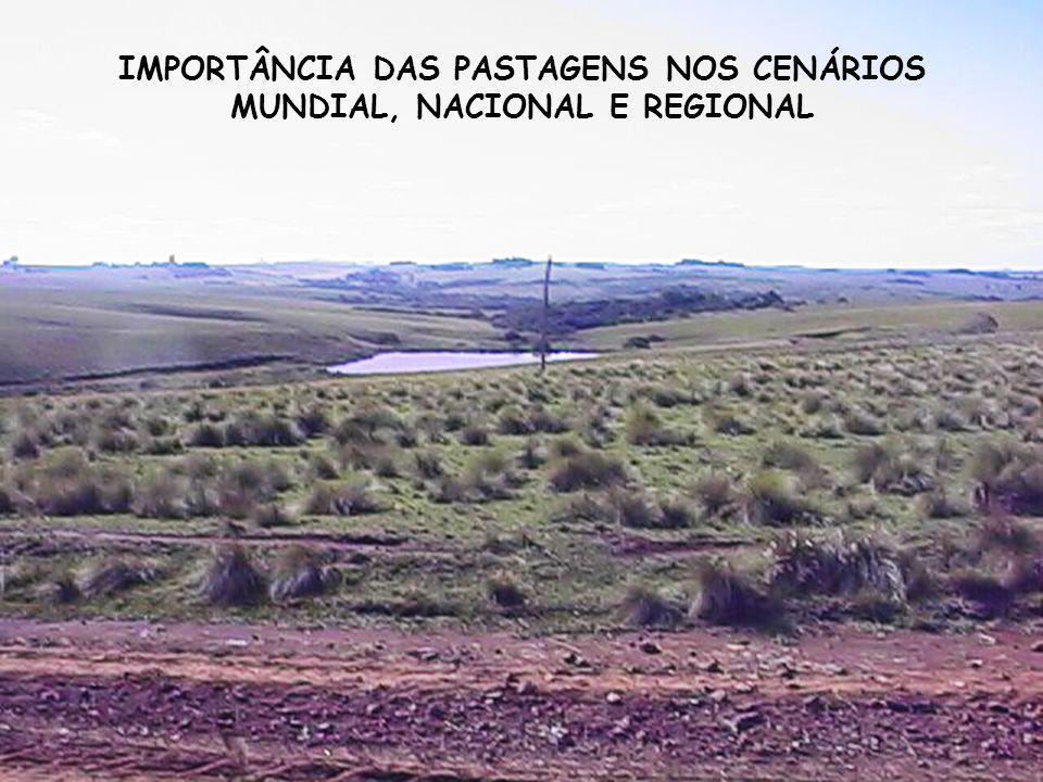Decréscimo em biodiversidade 32 16 8 4 2 1 (log 2 ) Biomassa aérea (g/m 2 ) 1500 1000 500 0 800 700 600 500 400 300 3 2 1 Hector et al.