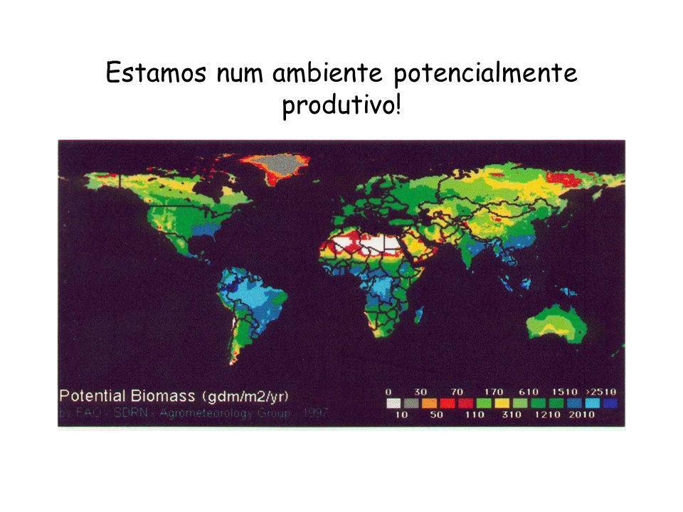 Estamos num ambiente potencialmente produtivo!