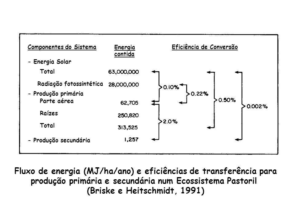 Componentes do Sistema Energia contida Eficiência de Conversão - Energia Solar Total Radiação fotossintética - Produção primária Parte aérea Raízes To