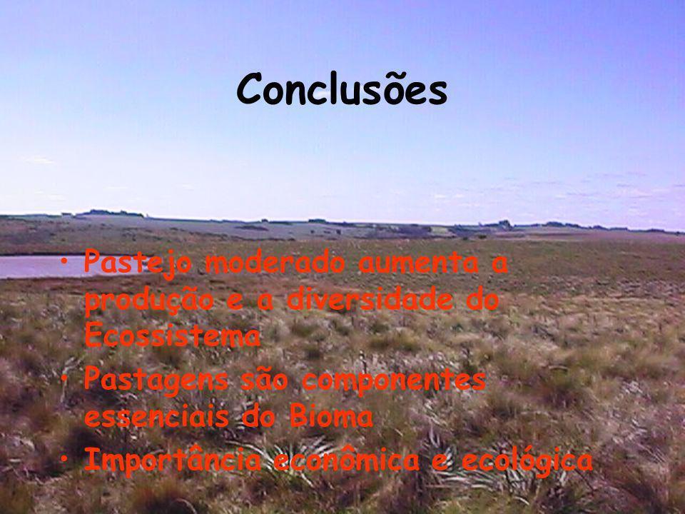 Pastejo moderado aumenta a produção e a diversidade do Ecossistema Pastagens são componentes essenciais do Bioma Importância econômica e ecológica Con