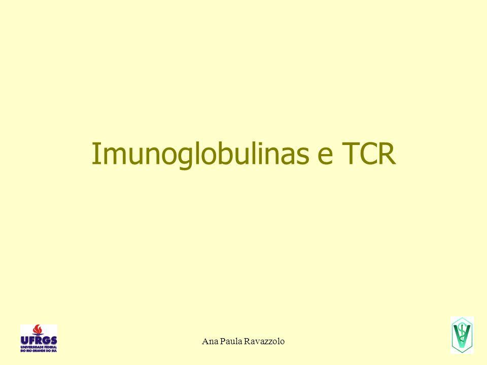 Ana Paula Ravazzolo Imunoglobulinas e TCR