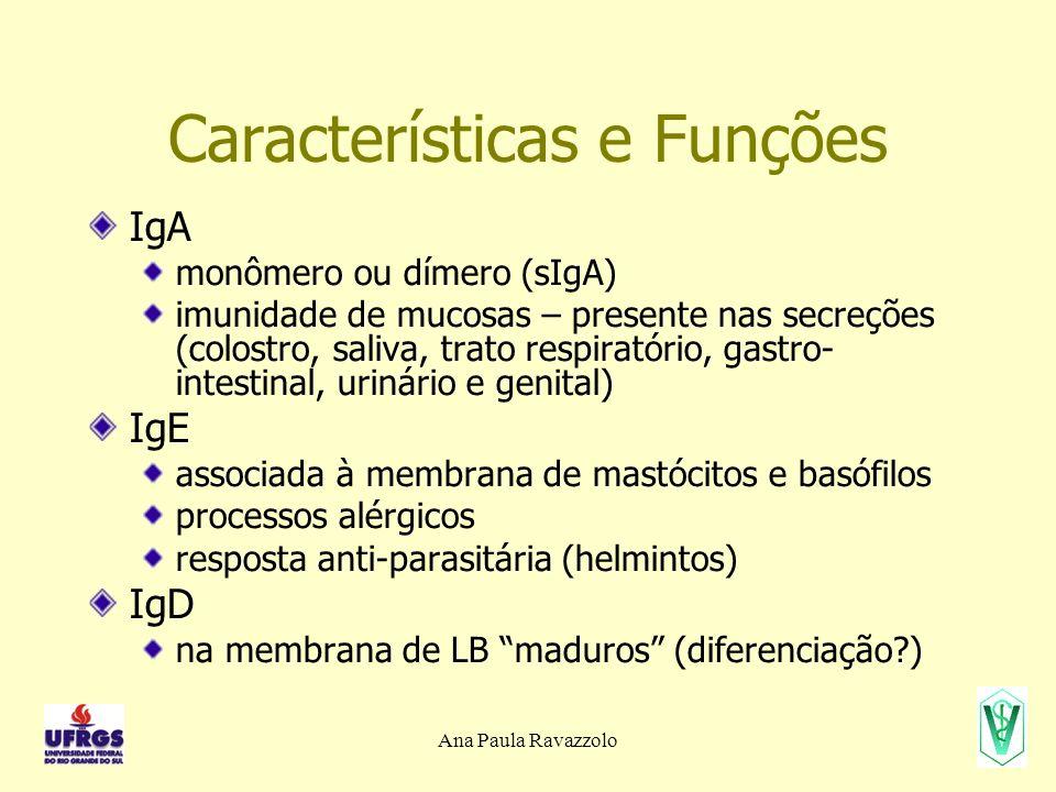 Ana Paula Ravazzolo Características e Funções IgA monômero ou dímero (sIgA) imunidade de mucosas – presente nas secreções (colostro, saliva, trato res
