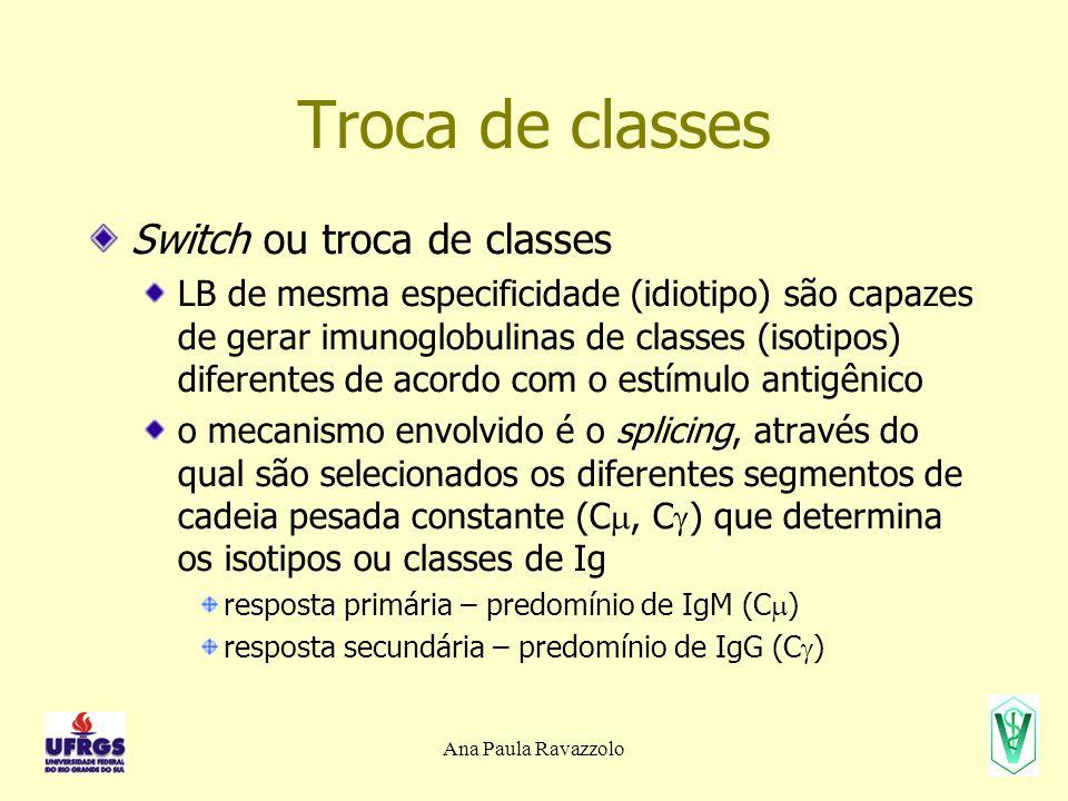 Ana Paula Ravazzolo Troca de classes Switch ou troca de classes LB de mesma especificidade (idiotipo) são capazes de gerar imunoglobulinas de classes