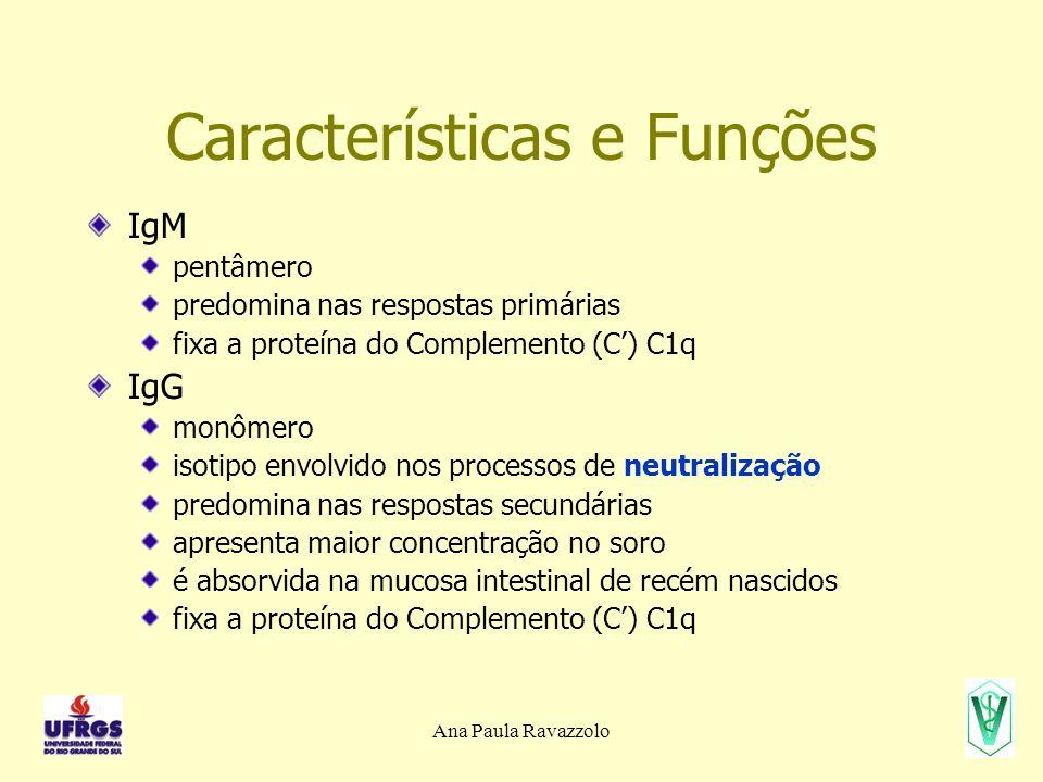 Ana Paula Ravazzolo Características e Funções IgM pentâmero predomina nas respostas primárias fixa a proteína do Complemento (C) C1q IgG monômero isotipo envolvido nos processos de neutralização predomina nas respostas secundárias apresenta maior concentração no soro é absorvida na mucosa intestinal de recém nascidos fixa a proteína do Complemento (C) C1q