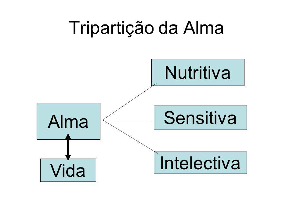 Alma Nutritiva Sensitiva Intelectiva Tripartição da Alma Vida