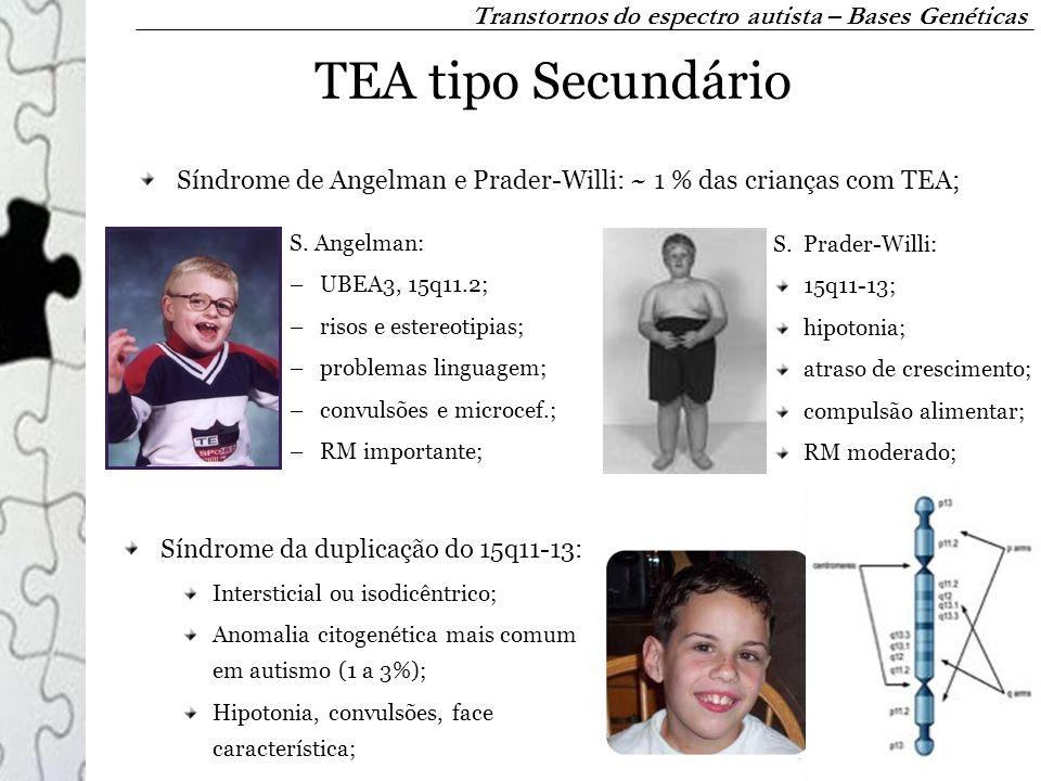 TEA tipo Secundário Síndrome de Angelman e Prader-Willi: ~ 1 % das crianças com TEA; S. Angelman: –UBEA3, 15q11.2; –risos e estereotipias; –problemas