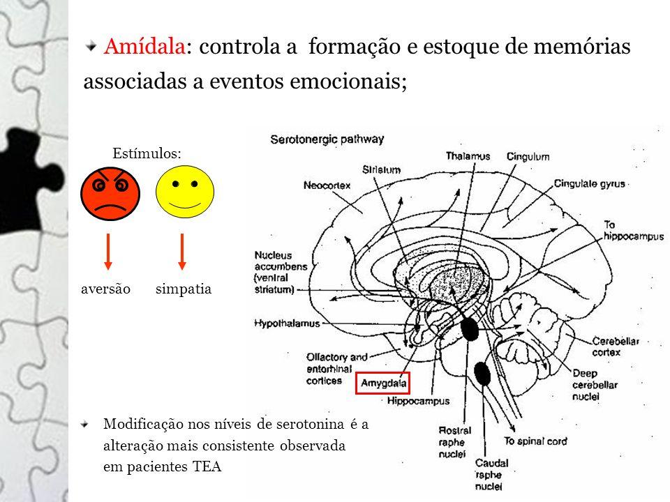 Amídala: controla a formação e estoque de memórias associadas a eventos emocionais; Estímulos: aversãosimpatia Modificação nos níveis de serotonina é