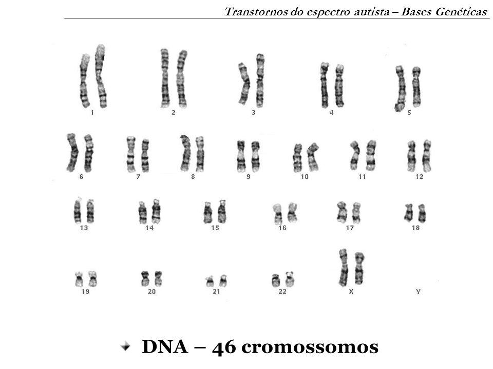 Transtornos do espectro autista – Bases Genéticas mutações no DNA – doenças genéticas