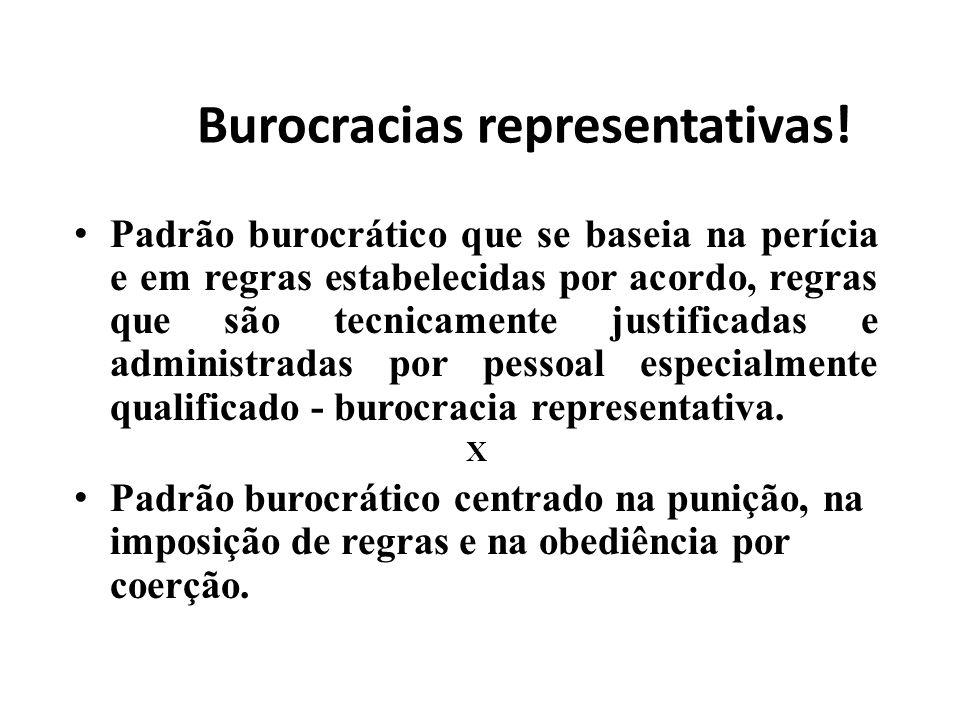 Burocracias representativas! Padrão burocrático que se baseia na perícia e em regras estabelecidas por acordo, regras que são tecnicamente justificada