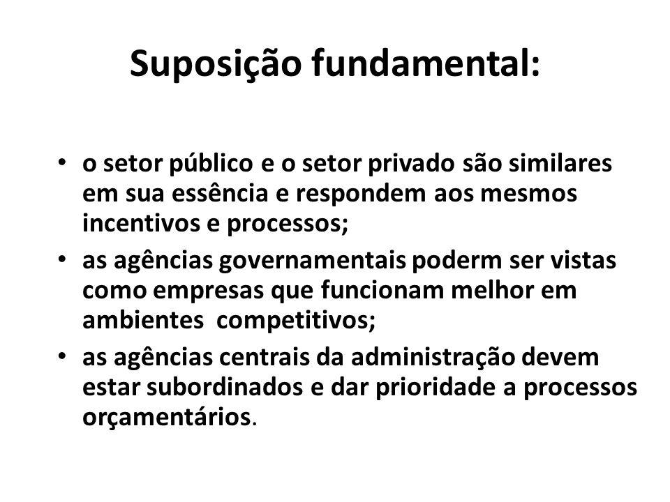 Suposição fundamental: o setor público e o setor privado são similares em sua essência e respondem aos mesmos incentivos e processos; as agências gove
