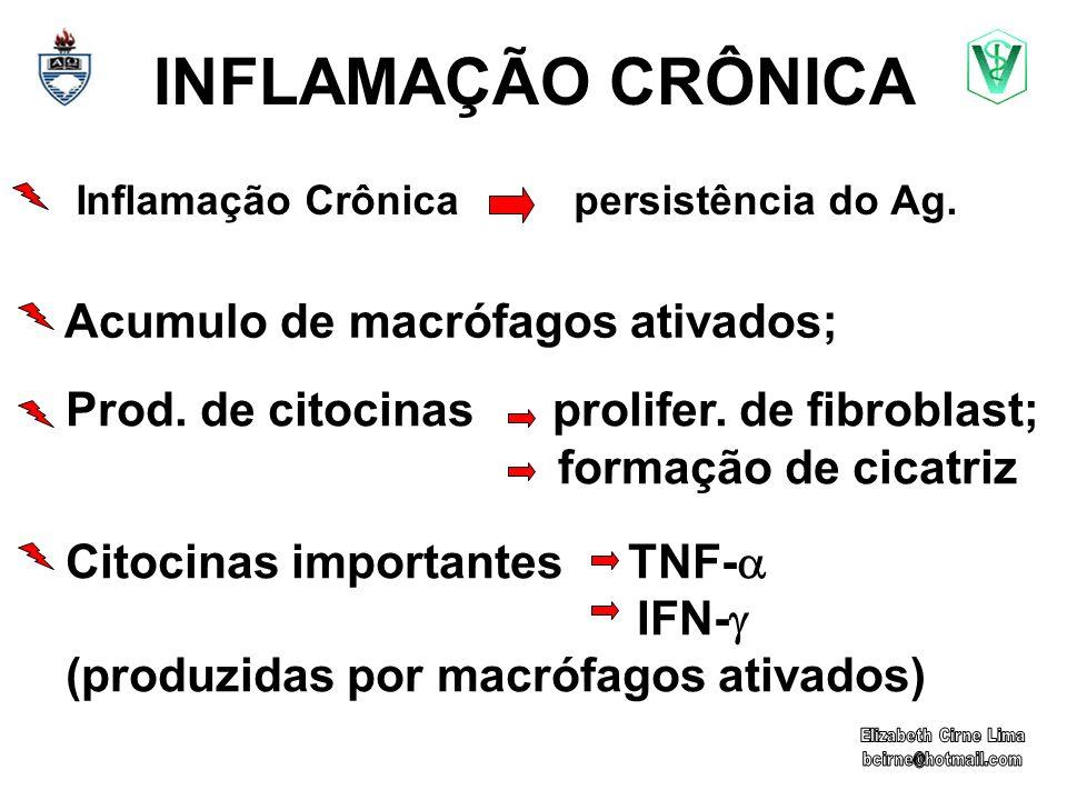 INFLAMAÇÃO CRÔNICA Inflamação Crônica persistência do Ag. Acumulo de macrófagos ativados; Prod. de citocinas prolifer. de fibroblast; formação de cica