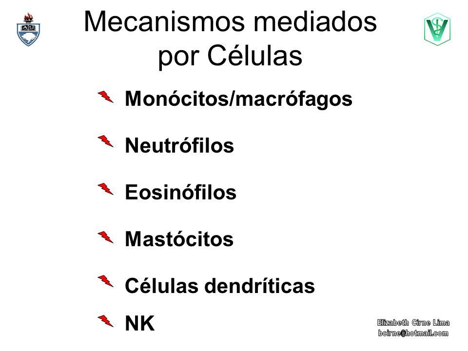 Mecanismos mediados por Células Monócitos/macrófagos Neutrófilos Eosinófilos Mastócitos Células dendríticas NK