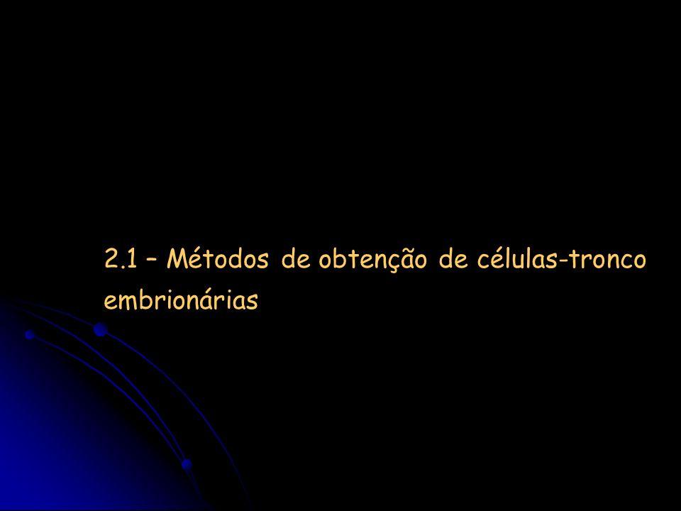 2.1 – Métodos de obtenção de células-tronco embrionárias
