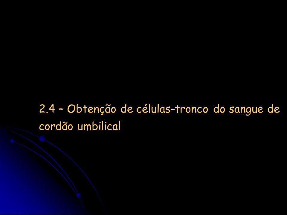 2.4 – Obtenção de células-tronco do sangue de cordão umbilical