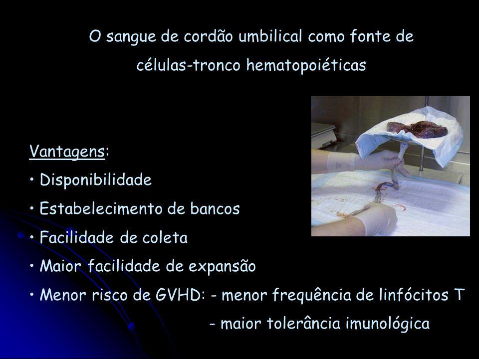 O sangue de cordão umbilical como fonte de células-tronco hematopoiéticas Vantagens: Disponibilidade Estabelecimento de bancos Facilidade de coleta Ma