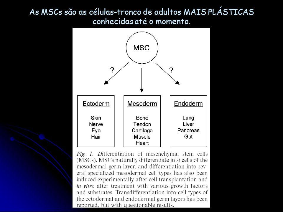 célula-tronco hematopoiética? célula-tronco mesenquimal (MSC, mesenchymal stem cell) Terapia de vários tipos de doenças com CT da medula óssea
