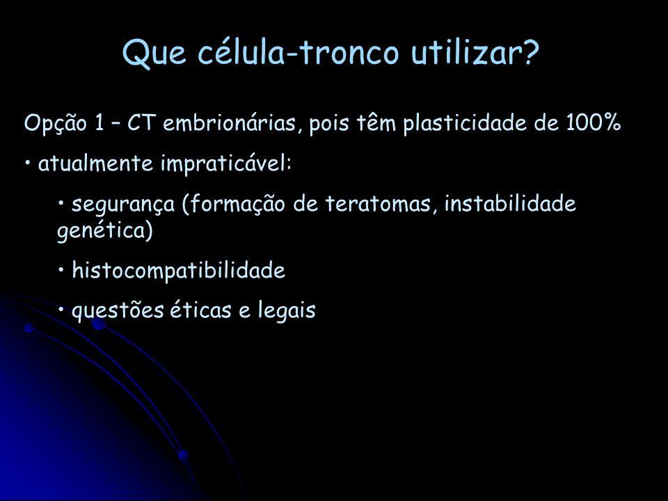 A importância do nicho para as células tronco: para eficiência da terapia celular, dar atenção também ao tipo de deficiência/lesão a ser corrigida les