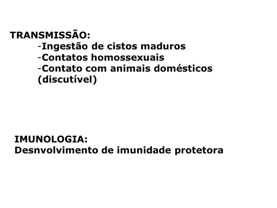 TRANSMISSÃO: -Ingestão de cistos maduros -Contatos homossexuais -Contato com animais domésticos (discutível) IMUNOLOGIA: Desnvolvimento de imunidade p