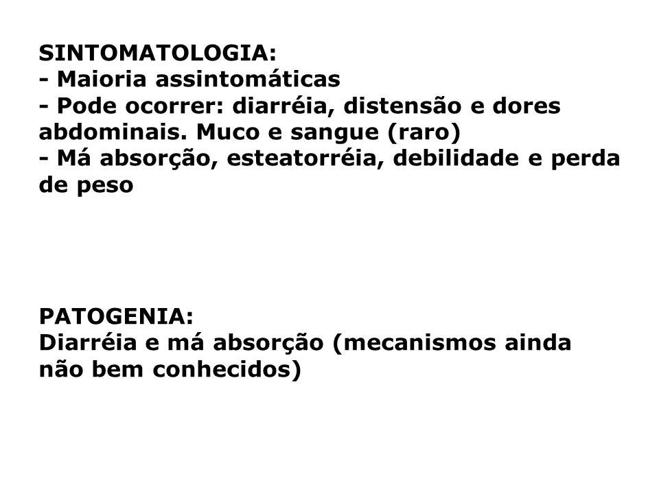 SINTOMATOLOGIA: - Maioria assintomáticas - Pode ocorrer: diarréia, distensão e dores abdominais. Muco e sangue (raro) - Má absorção, esteatorréia, deb